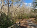 C Hunter's Ridge - Photo 4