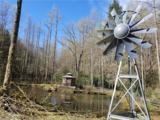 124 Greenbird Trail - Photo 5