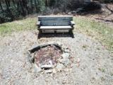 124 Greenbird Trail - Photo 6