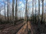 64 +/- Acres Firemender Valley Trail - Photo 30