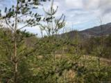 0000 Spring Cove Road - Photo 23