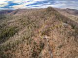 353 Black Bear Ridge Trail - Photo 1