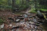 3619 Lonesome Mountain Road - Photo 10
