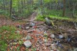 3619 Lonesome Mountain Road - Photo 12