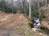 1016 Moss Creek Lane - Photo 14