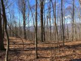 1016 Moss Creek Lane - Photo 4