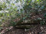 19 +/- Acres Royal Knoll Drive - Photo 31