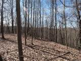 19 +/- Acres Homers Lane - Photo 21