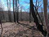 19 +/- Acres Homers Lane - Photo 22