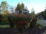 24 Grouse Ridge Drive - Photo 12