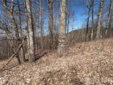 25 +/- Acres Homers Lane - Photo 11