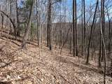 25 +/- Acres Homers Lane - Photo 15