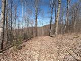 25 +/- Acres Homers Lane - Photo 17