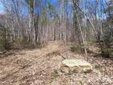 25 +/- Acres Homers Lane - Photo 19
