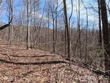25 +/- Acres Homers Lane - Photo 6