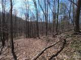25 +/- Acres Homers Lane - Photo 9