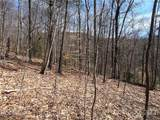25 +/- Acres Homers Lane - Photo 10