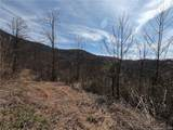 41 +/- Acres Homers Lane - Photo 11