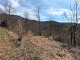 41 +/- Acres Homers Lane - Photo 10