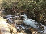tbd Greybeard Trail - Photo 4