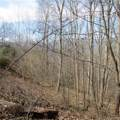 6 Cinnamon Ridge - Photo 17