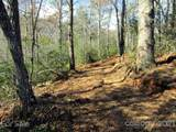 33 Wild Top Trail - Photo 4