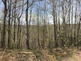 Lot 92 Catawba Falls Preserve Road - Photo 11