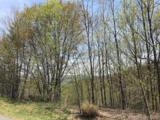 Lot 92 Catawba Falls Preserve Road - Photo 15
