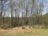 Lot 92 Catawba Falls Preserve Road - Photo 9
