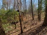 TBD Whitetail Trail - Photo 17
