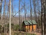 TBD Whitetail Trail - Photo 6