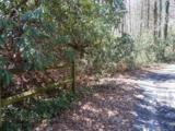 LOTS 6, 34, & 35 Timber Run Road - Photo 3