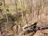 Lot 4 Liner Creek Road - Photo 16