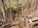 Lot 4 Liner Creek Road - Photo 17
