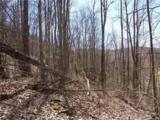 Lot 4 Liner Creek Road - Photo 30