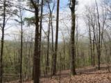 00 Mineral Springs Mountain Road - Photo 1