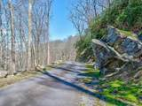 96 Castanea Mountain Drive - Photo 11