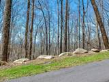 96 Castanea Mountain Drive - Photo 3
