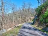 96 Castanea Mountain Drive - Photo 10