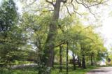 4 Brookgreen Place - Photo 5