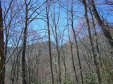 Lot 284 Running Deer Trail - Photo 46