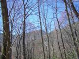 Lot 284 Running Deer Trail - Photo 47