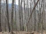 00 Wooded Valley Lane - Photo 1