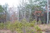 Lot 17 Bambi Drive - Photo 4