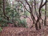 3 White Oak Terrace - Photo 1