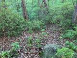 0000 Hawks Nest Trail - Photo 11