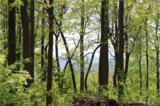 000000 Mcalpine Mountain Road - Photo 17