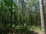 1136 Whispering Woods Way - Photo 5