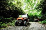 411 Red Fox Trail - Photo 13