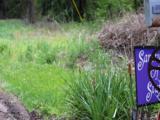 438 Weaverville Road - Photo 2